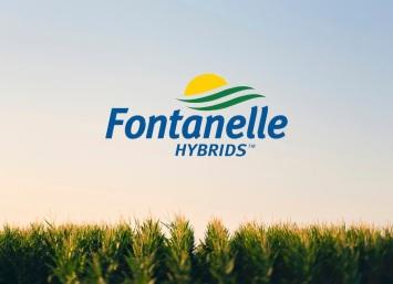 fontanelle-hybrids